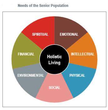 senior needs.png